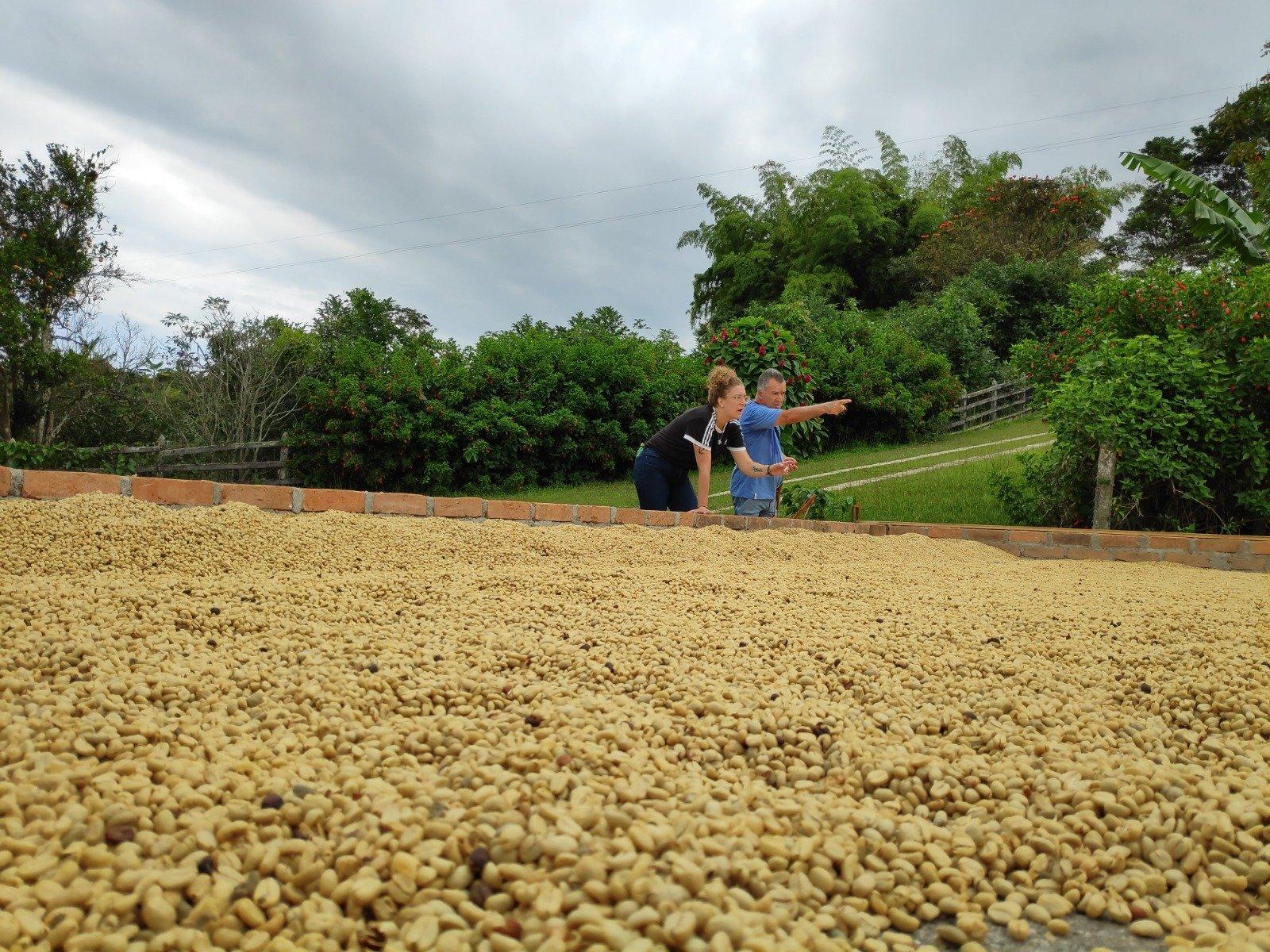 Koffie finca Colombia bezoeken